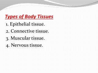 Types of Body Tissues
