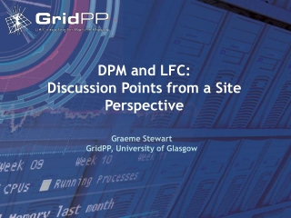 DPM and LFC: Discussion Points from a Site Perspective