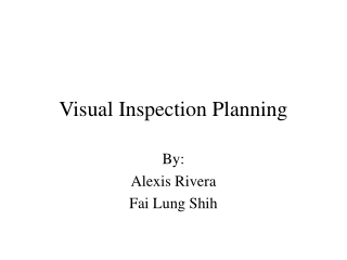 Visual Inspection Planning