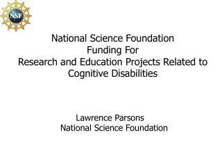 Lawrence Parsons National Science Foundation