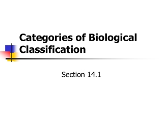 Categories of Biological Classification