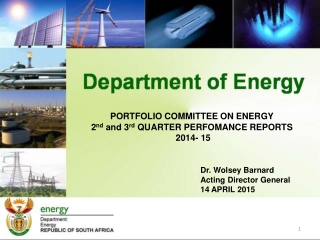 PORTFOLIO COMMITTEE ON ENERGY 2 nd  and 3 rd  QUARTER PERFOMANCE REPORTS  2014- 15