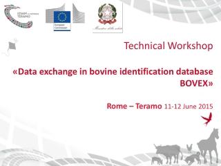 Technical Workshop « Data  exchange  in bovine  identification  database BOVEX »