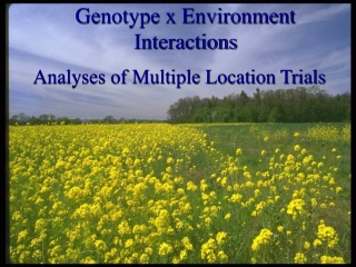 Genotype x Environment Interactions