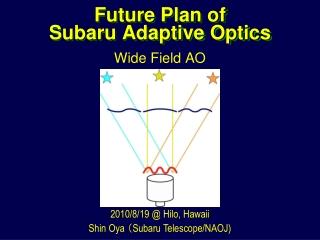 Future Plan of Subaru Adaptive Optics