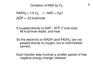 Oxidation of NAD by O 2
