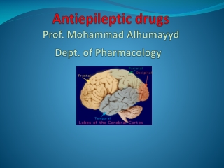 Antiepileptic drugs Prof. Mohammad  Alhumayyd Dept. of Pharmacology