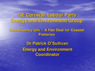 Dr Patrick O'Sullivan Energy and Environment Coordinator