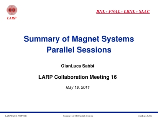 Summary of Magnet Systems Parallel Sessions