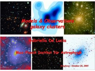 Models & Observations galaxy clusters Gabriella De Lucia