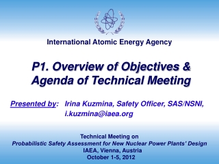Technical Meeting on Probabilistic Safety Assessment for New Nuclear Power Plants' Design