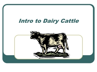 Intro to Dairy Cattle