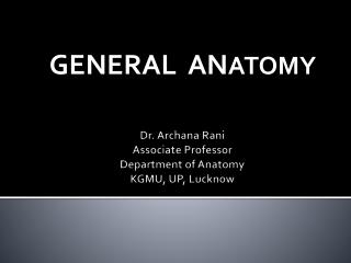 Dr. Archana Rani Associate Professor Department of Anatomy KGMU, UP, Lucknow