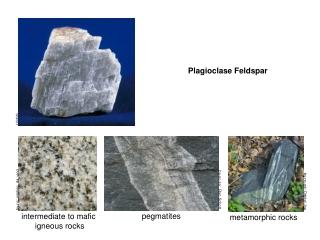 intermediate to mafic  igneous rocks