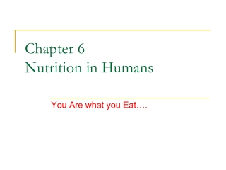 Chapter 6 Nutrition in Humans