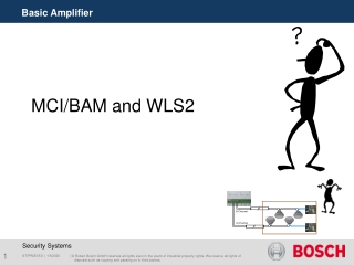 MCI/BAM and WLS2
