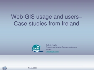 Web-GIS usage and users–  Case studies from Ireland