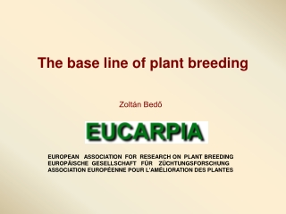 The base line of plant breeding