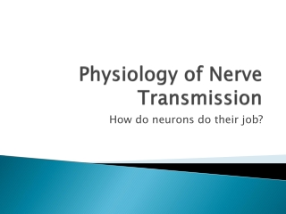 Physiology of Nerve Transmission
