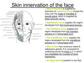 Skin innervation of the face