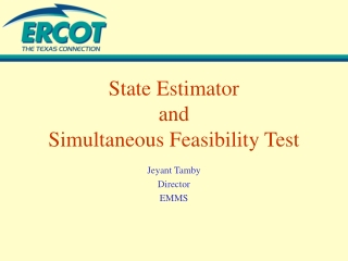 State Estimator and Simultaneous Feasibility Test
