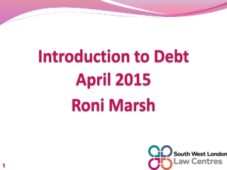 Introduction to Debt