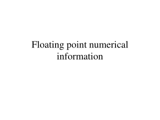 Floating point numerical information
