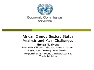 African Energy Sector: Status Analysis and Main Challenges