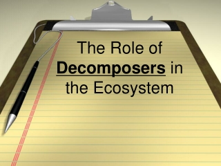 The Role of  Decomposers  in the Ecosystem