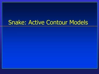 Snake: Active Contour Models
