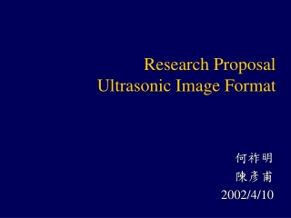 Research Proposal Ultrasonic Image Format