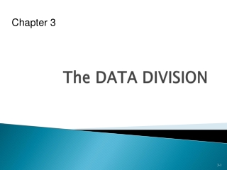 The DATA DIVISION