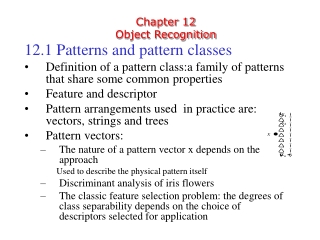 Chapter 12 Object Recognition