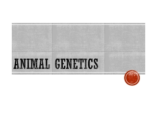 Animal Genetics