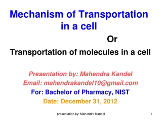 Mechanism of Transportation in a cell