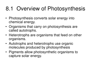 8.1  Overview of Photosynthesis