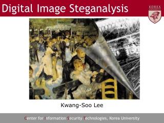 Digital Image Steganalysis