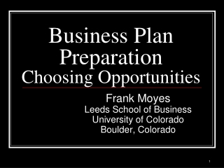 Business Plan Preparation Choosing Opportunities