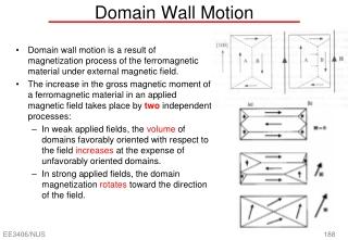 Domain Wall Motion