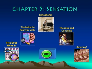 Chapter 5: Sensation