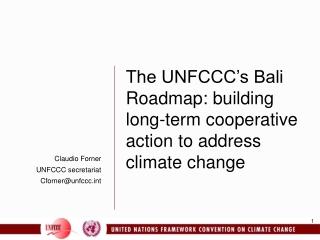 Claudio Forner UNFCCC secretariat Cforner@unfccct