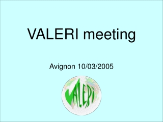 VALERI meeting