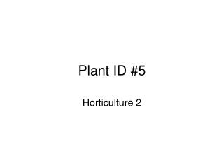 Plant ID #5