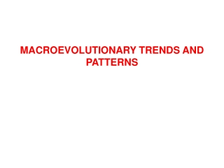 MACROEVOLUTIONARY TRENDS AND PATTERNS