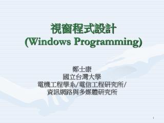 視窗程式設計 (Windows Programming)