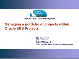 Managing a portfolio of projects within Oracle EBS Projects