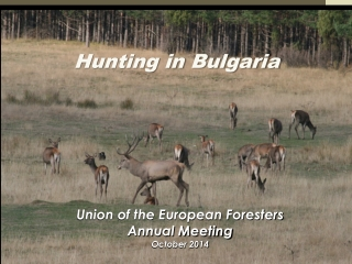 Hunting in Bulgaria