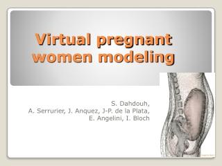 Virtual pregnant women modeling