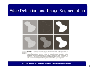 Edge Detection and Image Segmentation