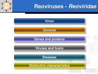 Reoviruses -  Reoviridae